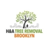 H&A Tree Service - Brooklyn